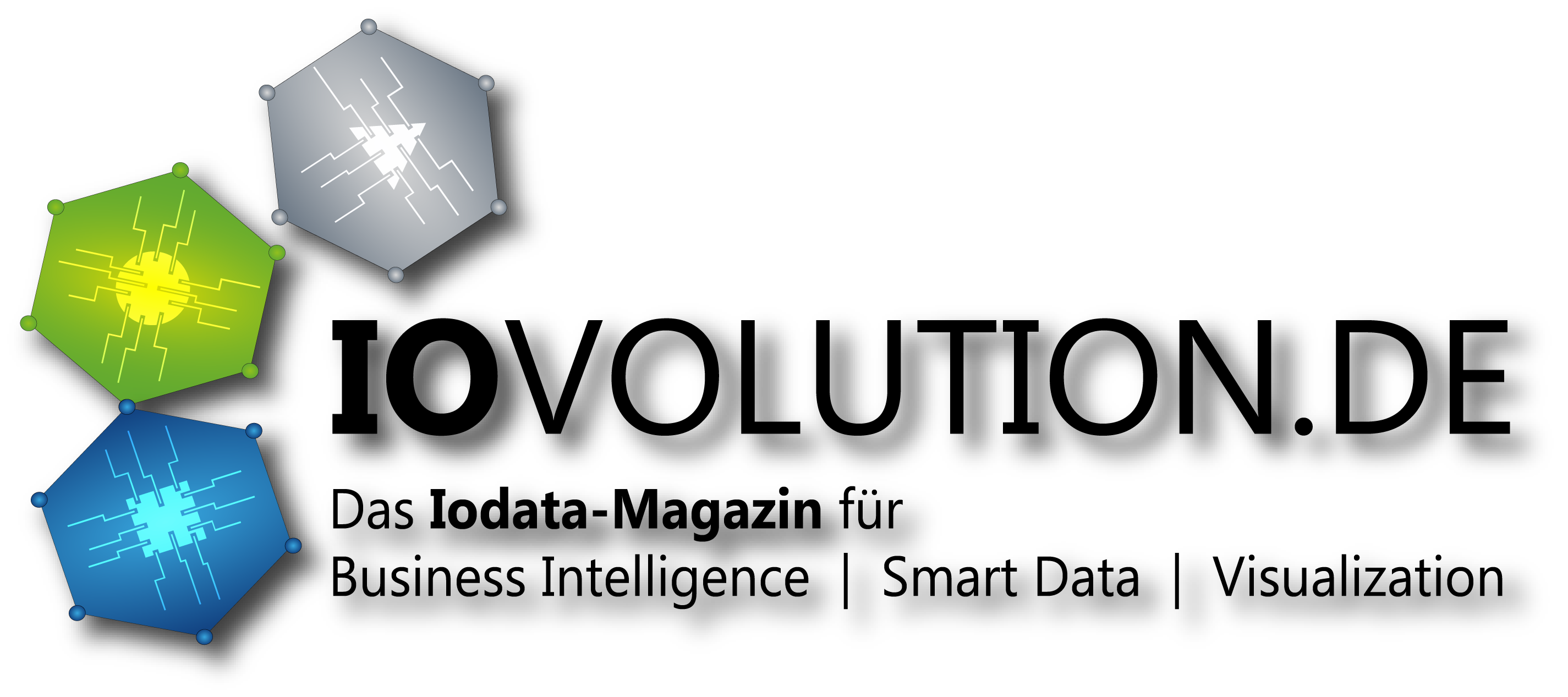 iovolution-logo-din-a4-1